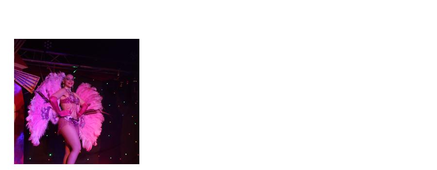 MUSIC-HALL & DANCE Company : La troupe de danse. Voyagez dans le monde du Music-hall au travers de nombreux tableaux variés et modernes composé de Plumes, de Strass et de Paillettes.  Mais vous apprécierez aussi : des numéros de charme et de féérie, des danses du monde envoutantes ou encore l'incontournable French' cancan !